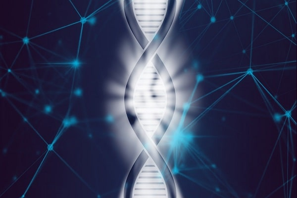 HashCash Gets Into Precision Healthcare with New DNA Database Collaboration