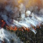 The Use Of AI For Wildfire Detection And Prevention